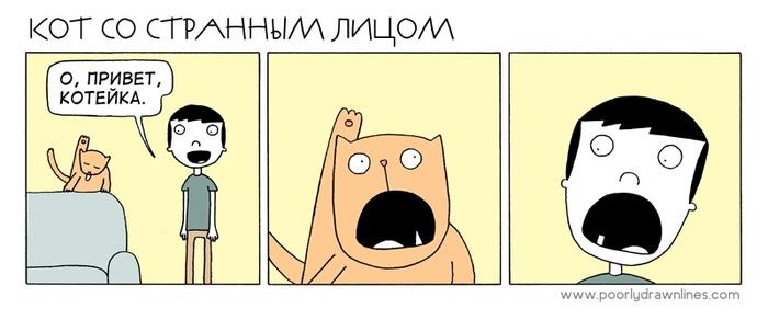 Со странным лицом кот