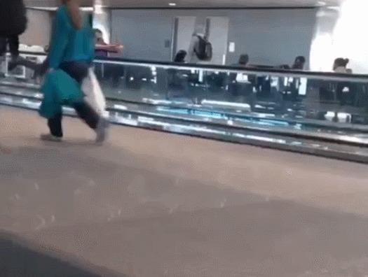 """""""Привезите нам еще этой херни!"""" © Аэропорт, Пловцы, Тяжелая наркомания, Юмор, Гифка"""