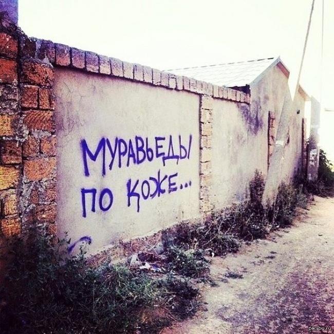 Вижу рифму Вижу рифму, Муравьед, Надпись на стене