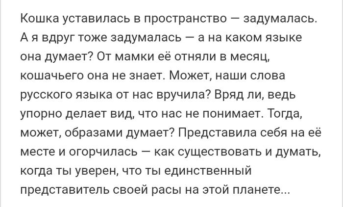 Как- то так 302... Форум, Скриншот, Подборка, Вконтакте, Всякая чушь, Как- то так, Staruxa111, Длиннопост