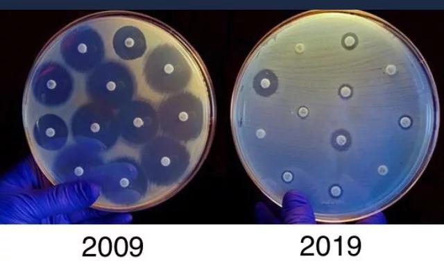 Одна из проблем за 10 лет 9GAG, Бактерии, Антибиотики, 10yearschallenge, Здоровье