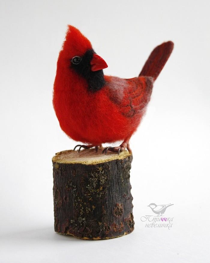 Красный кардинал.Сухое валяние из шерсти. Рукоделие, Творчество, Рукоделие без процесса, Handmade, Сухое валяние, Птицы, Игрушки, Длиннопост