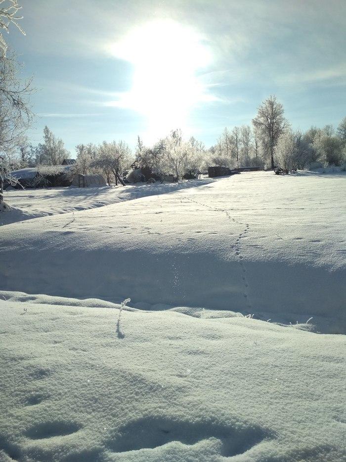 Немного Латвии Латвия, Природа, Снег, Зима, Длиннопост