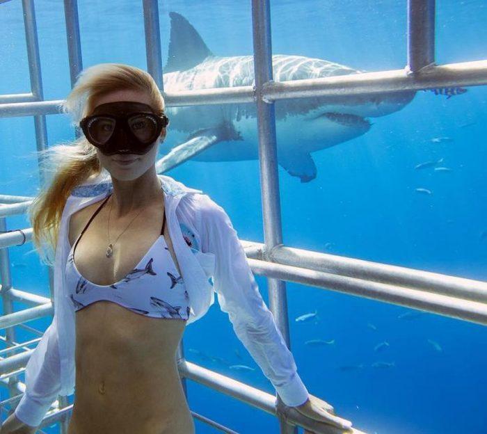 Красавица и чудовища Экология, Природа, Акула, Дайвинг, Экосфера, Длиннопост, Защита животных, Океан, Рыбалка