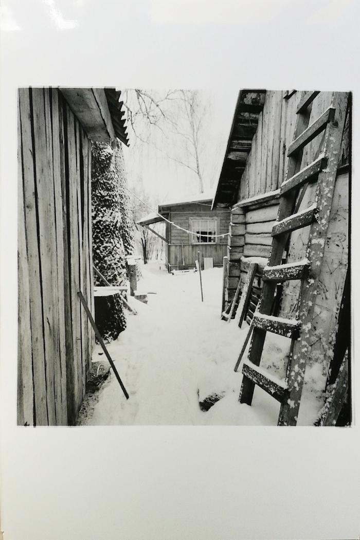 Добрый день! Фотопленка, Hasselblad, Bronica, Ручная печать, Черно-Белое фото, Длиннопост