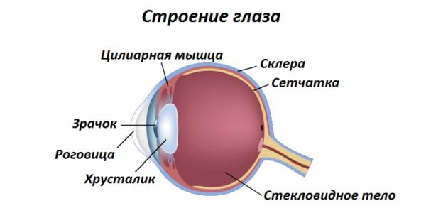 Лазерная коррекция зрения. Что, зачем и как Лазерная коррекция, Длиннопост, Зрение