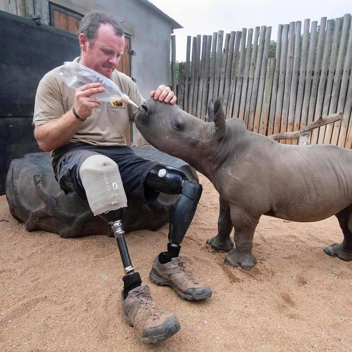 На грани выживания ЮАР, Носорог, Ветераны, Спасение животных