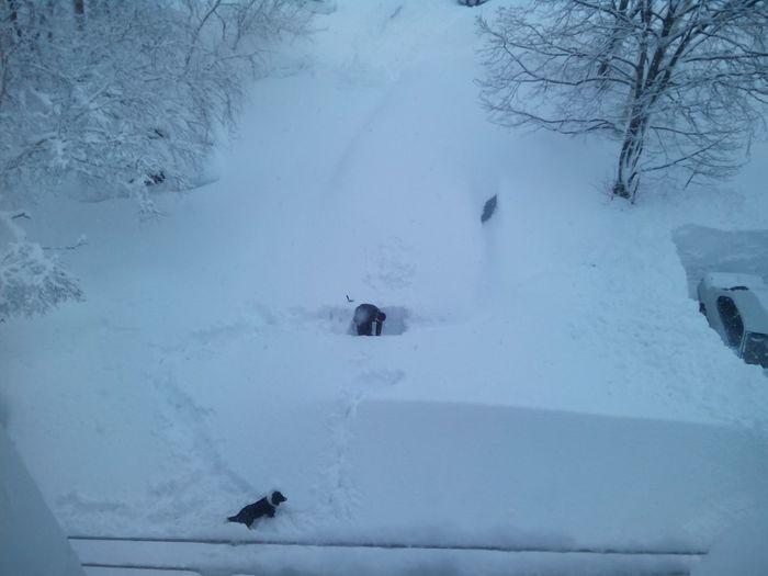 После пурги Снег, Лопата, Камчатка