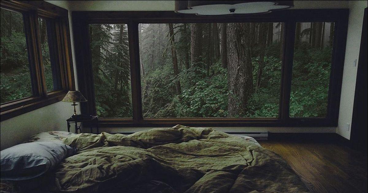 картинка кровать в лесу оригинальных эффектов различных