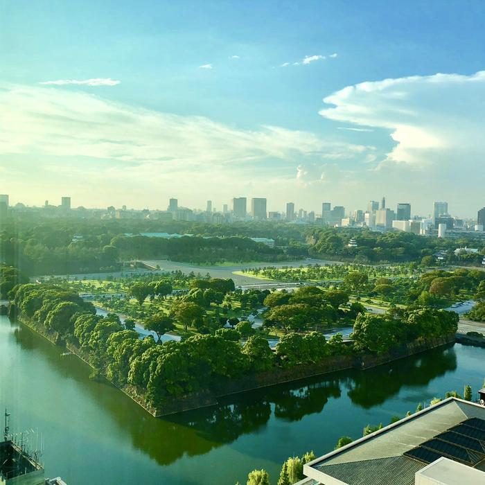 Токио выглядит как другой мир.