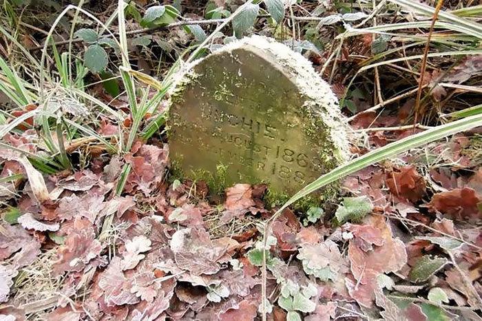 В английском лесу нашли 130-летний надгробный камень с неожиданной надписью Животные, Находка, Человек, Длиннопост, Кролик, Могила