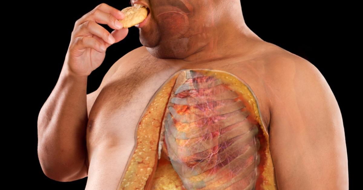 Жир в теле картинки