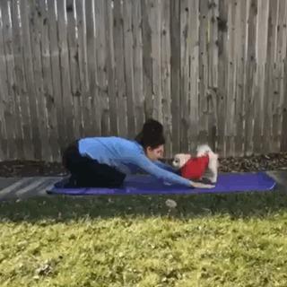 Йога по собачьи.