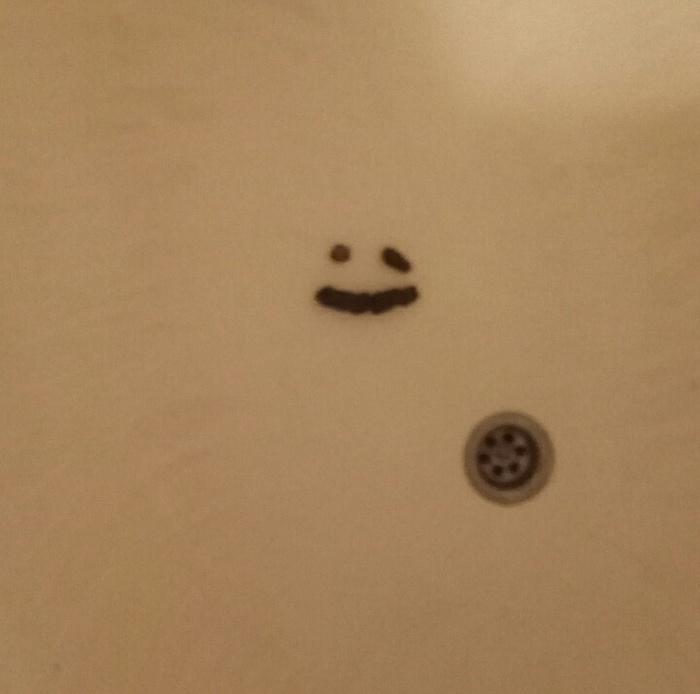Эта шерстяная сволочь теперь не только срёт в ванну, когда ей что-то не нравится. Кот, Недовольство, Издевательство, Длиннопост