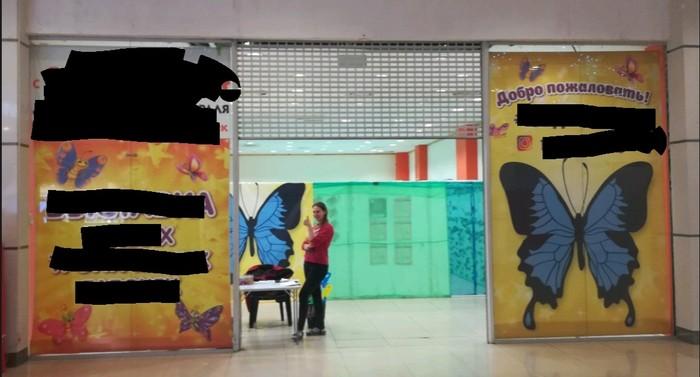 Выставка бабочек как бизнес. Часть 1 из 7. Вводная. Бизнес, Как мы начинали свой бизнес, Бабочка, Выставка