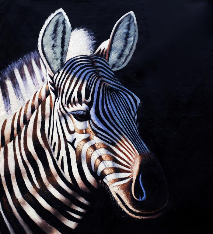 """Картина маслом """"Зебра в солнечном свете"""" Зебра, Животные, Картина маслом, Живопись, Искусство, Природа, Поп-Арт"""
