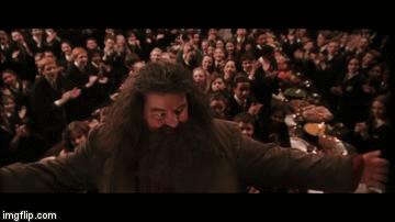 Когда твой пост попал в горячее Хагрид, Гарри Поттер, Гифка, Посты на Пикабу