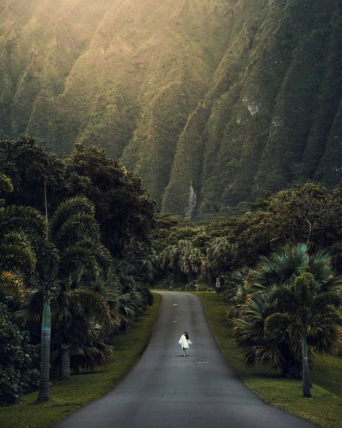 Зелёный рай на Земле,Oahu, Hawaii