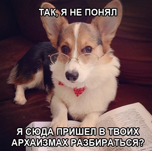 Мем о Василие Буслаеве Славянские мемы, Василий Буслаев, Богатырь, Длиннопост