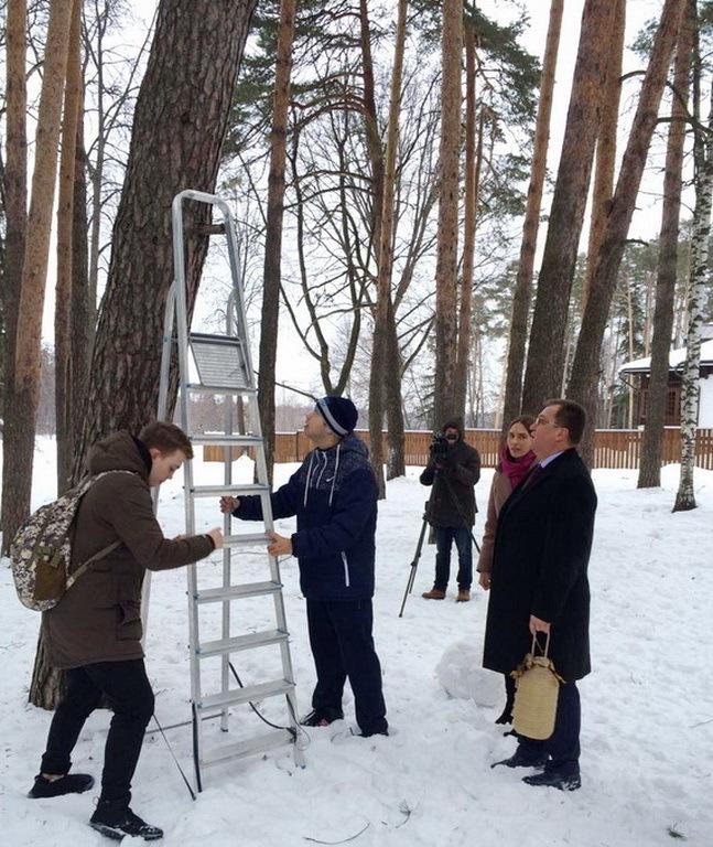 Новость недели: подмосковный глава лично приколотил на дерево кормушку для птиц Игорь Сухин, Ногинск, Кормушка для птиц, Пиар, Длиннопост, Новости