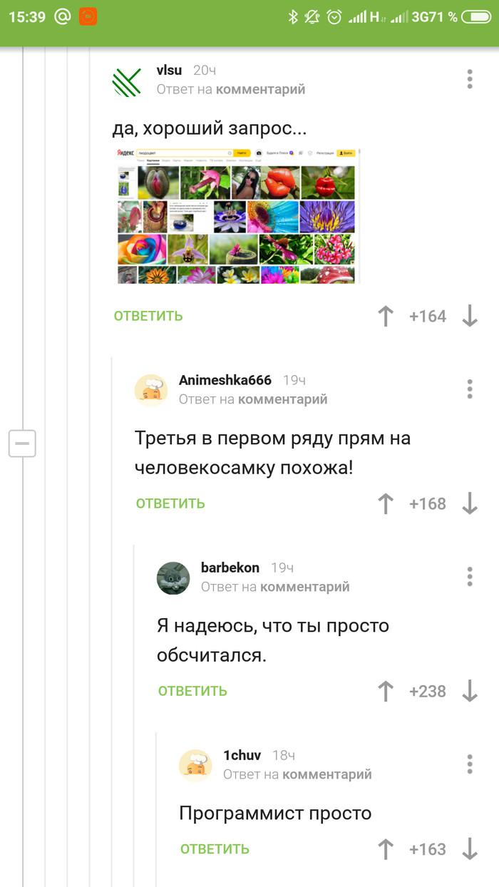 Программист просто Программист, Длиннопост, Яндекс Алиса, Комментарии на Пикабу, Скриншот, Комментарии, Мат