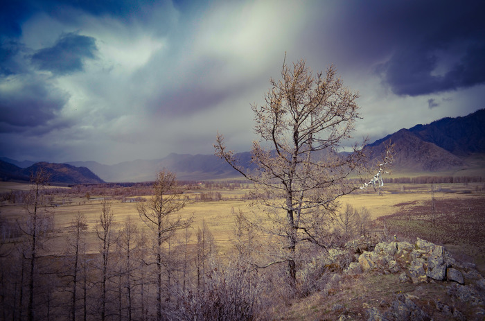 Памятник суслику. Горный Алтай, Путешествия, Начинающий фотограф, Горы, Традиции, Ритуал, Длиннопост