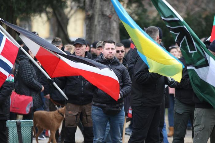 В Европе нацизма нет. Политика, Нацизм, Ревизионизм, Длиннопост