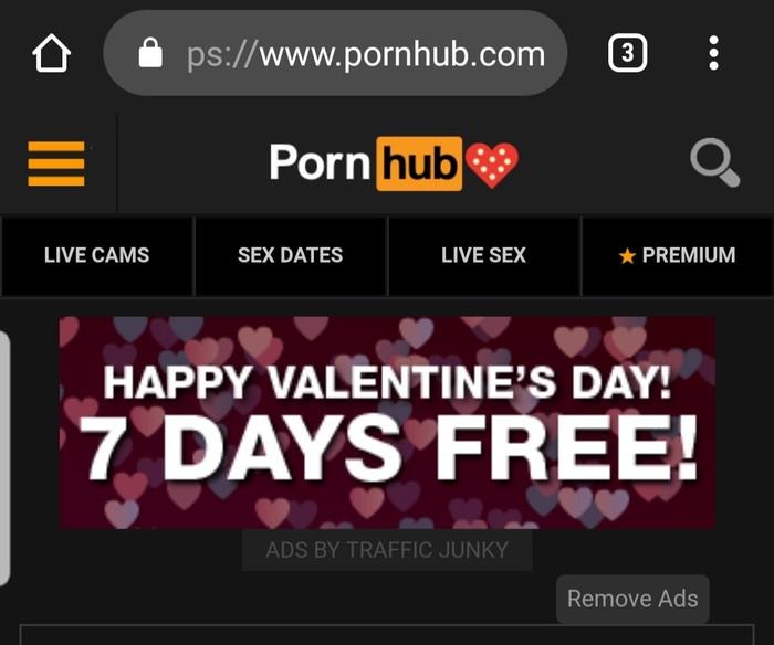 День святого Валентина День святого Валентина, Pornhub, Поздравление, Скриншот