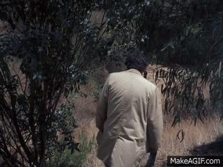 """За кадром """"Коломбо"""" Коломбо, Сериалы, Детектив, Питер Фальк, Интересное, Гифка, Длиннопост"""
