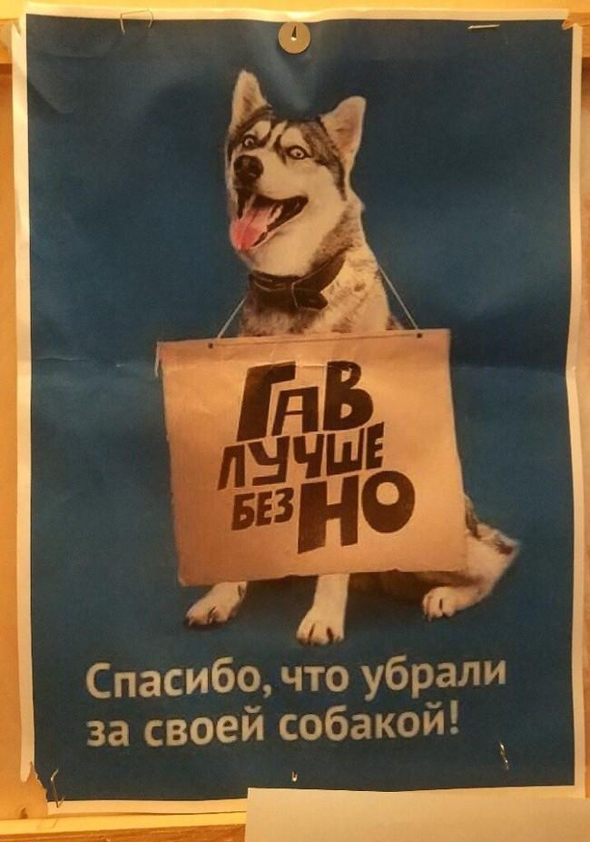 Реклама, которую мы заслужили.