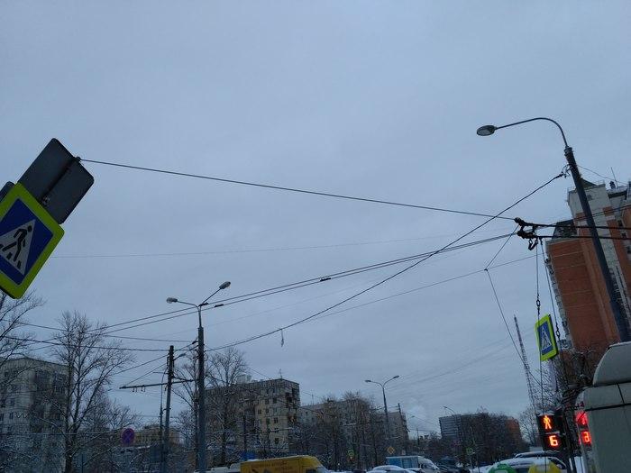 Странное дтп в Москве ДТП, Мосгортранс