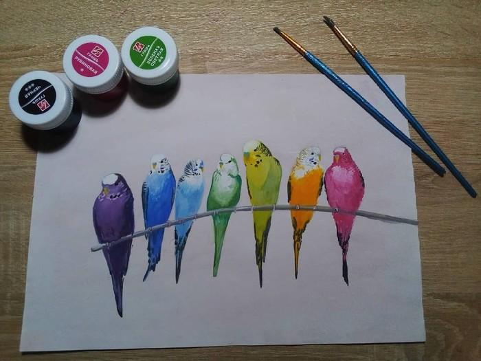 Попугайчики Рисунок, Волнистые попугаи, Попугай, Гуашь