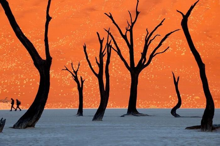 Фотографии из Мертвой долины в Намибии. Намибия, Фотография, Африка, Сюрреализм, Длиннопост