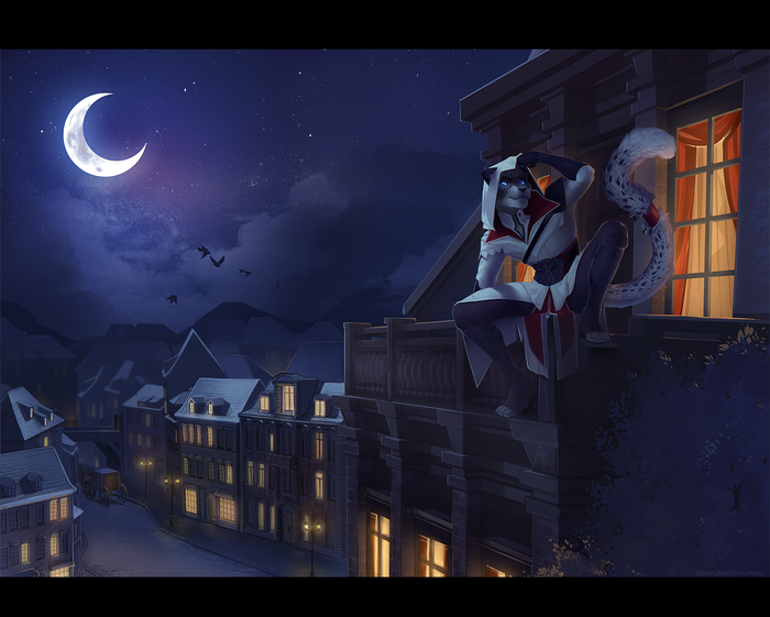 Ночь Mewyfox, Фурри, Арт, Ночь, Город, Assassins Creed