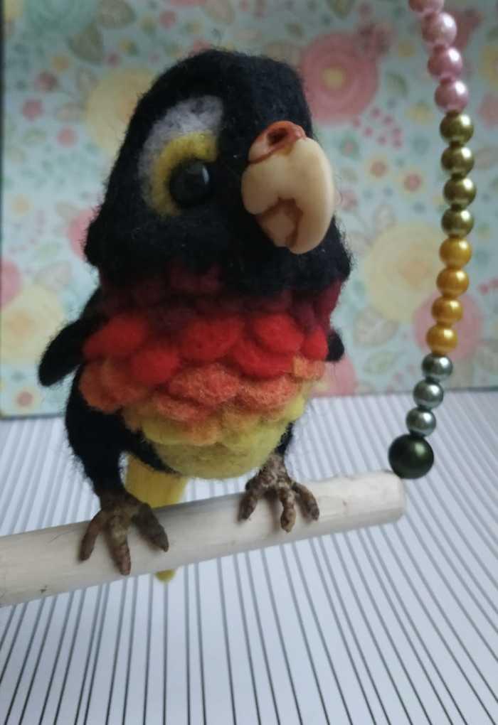 Маленький гордый птиц Сухое валяние, Рукоделие без процесса, Попугай, Длиннопост