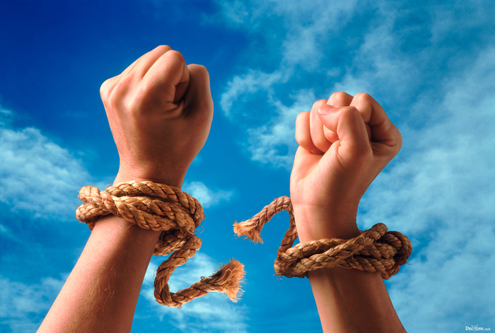 Лига гражданских свобод Сообщество, Пикабу, Права, Свобода, Политика