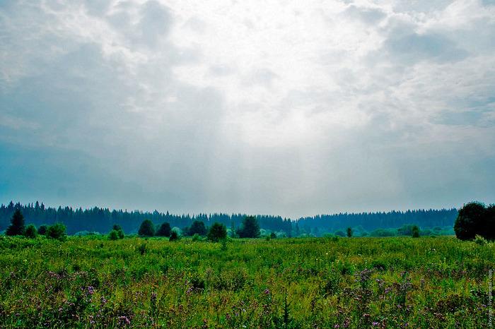 Путешествие в сердце пармы. Глава 5. Чудова болото. Путешествия, Фотография, Пермский край, Болото, Длиннопост