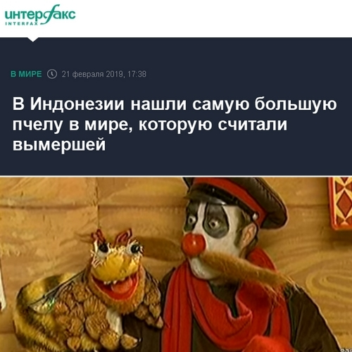 https://cs10.pikabu.ru/post_img/2019/02/21/9/155076165114518117.jpg