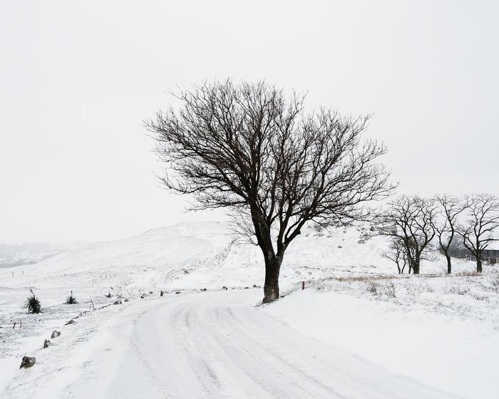 Выпал снег... (Керчь, гора Митридат)