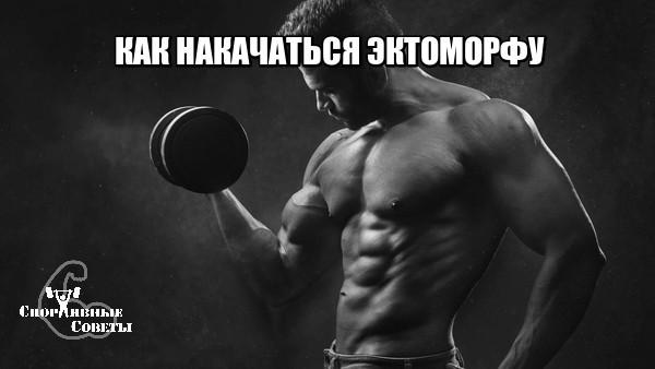 Как накачаться эктоморфу Спорт, Тренер, Спортивные советы, Эктоморф, Исследование, Тренировка, Качалка, Мышцы, Длиннопост