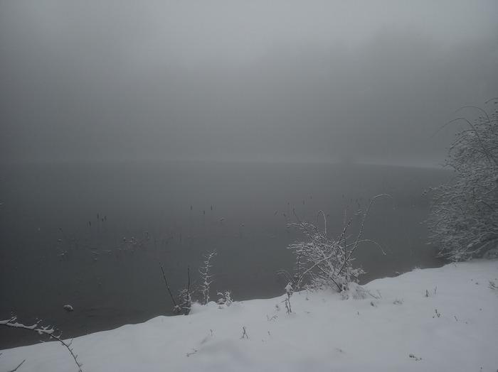 В Ялте стартанула двухдневняя зима. Фотография, Природа, Лес, Зима, Ялта, Длиннопост