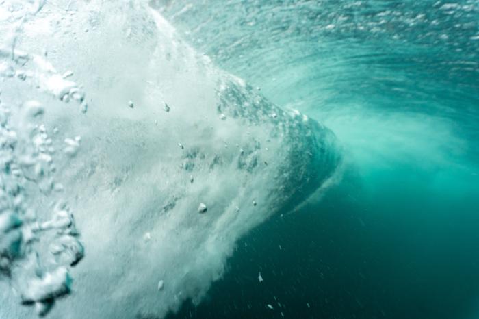 Посмотрим на Анапские волны с другой стороны Анапа, Черное море, Волна, Подводный мир, Природа России, Море, Природа, Красота природы, Длиннопост