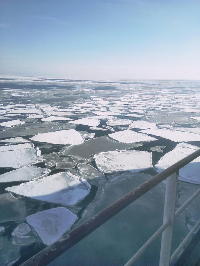 Подплывая к Сахалину. Порт Корсаков.