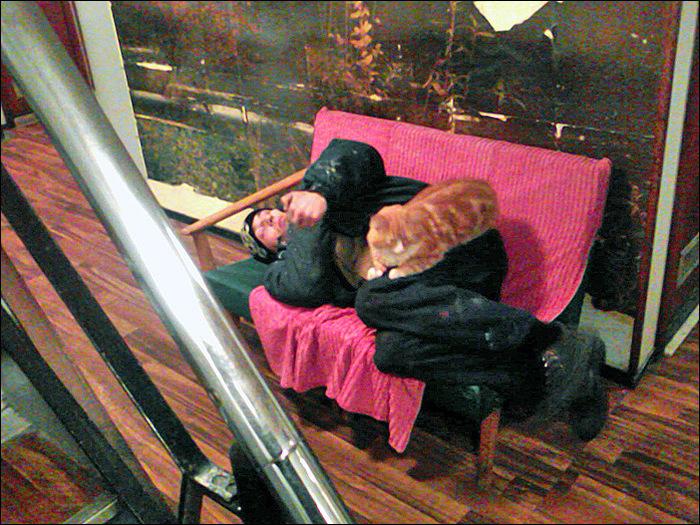 История короткой жизни, любви и гибели судового кота Рыжика. Флот, Море, Мемуары, Реальная история из жизни, Кот, Длиннопост, Грустное