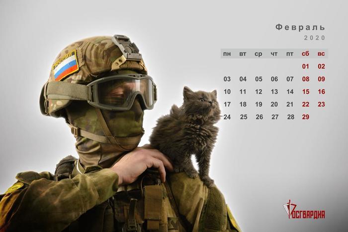 """Новый календарь: """"Спецназ и котики"""" Росгвардия, Календарь, Спецназ, Кот, Длиннопост, Домашние животные"""