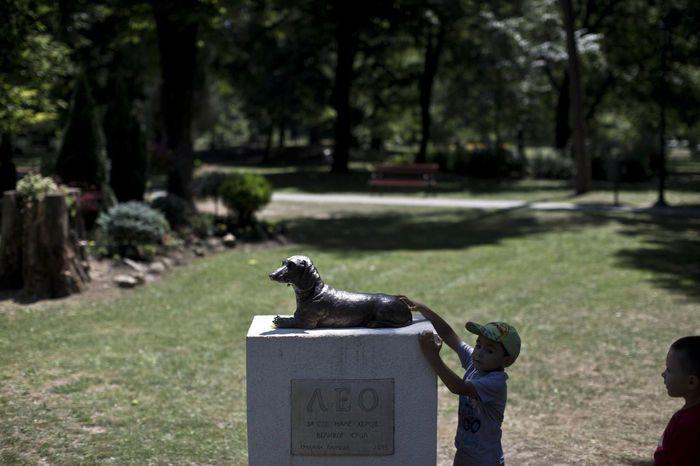 Маленький герой с большим сердцем Собака, Такса, Самопожертвование, Памятник, Сербия, Статуя, Длиннопост