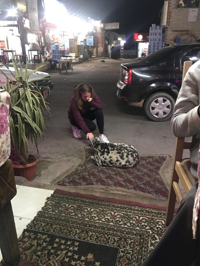 Дахаб - мой второй дом... Дахаб, Дайвинг, Интересное, Фотография, Путешествия, Египет, Длиннопост