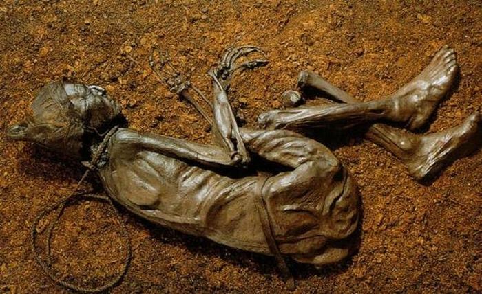 Болотные мумии Болото, Длиннопост, История, Торф, Дубление, Картинки