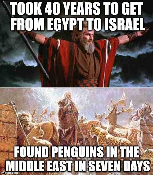 Ной - спаситель пингвинов Reddit, Библия, Пингвины, Потоп