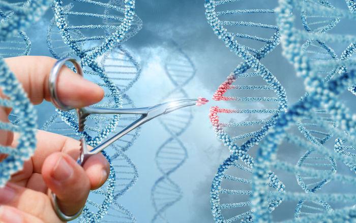 Власти Китая выступили за продолжение работ по редактированию генов Китай, Здоровье, Генетика, Редактирование генома, Вирус, ВИЧ, ТАСС, Длиннопост, Crispr